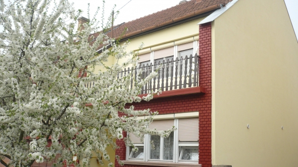 5 bedroom family house in good condition - Szeged - 2/11